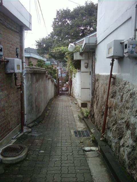 사진101004_001.jpg